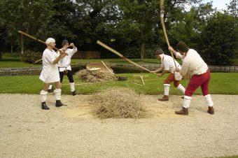 Les Rendez-Vous du Moyen Âge : Le monde paysan